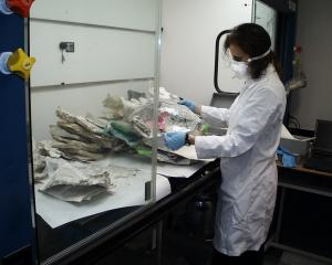 Sorting the damaged books and documents in a fume hood